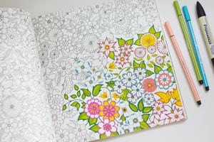 Secret Garden An Inky Treasure Hunt & Colouring Book via presentsofmind.com.au