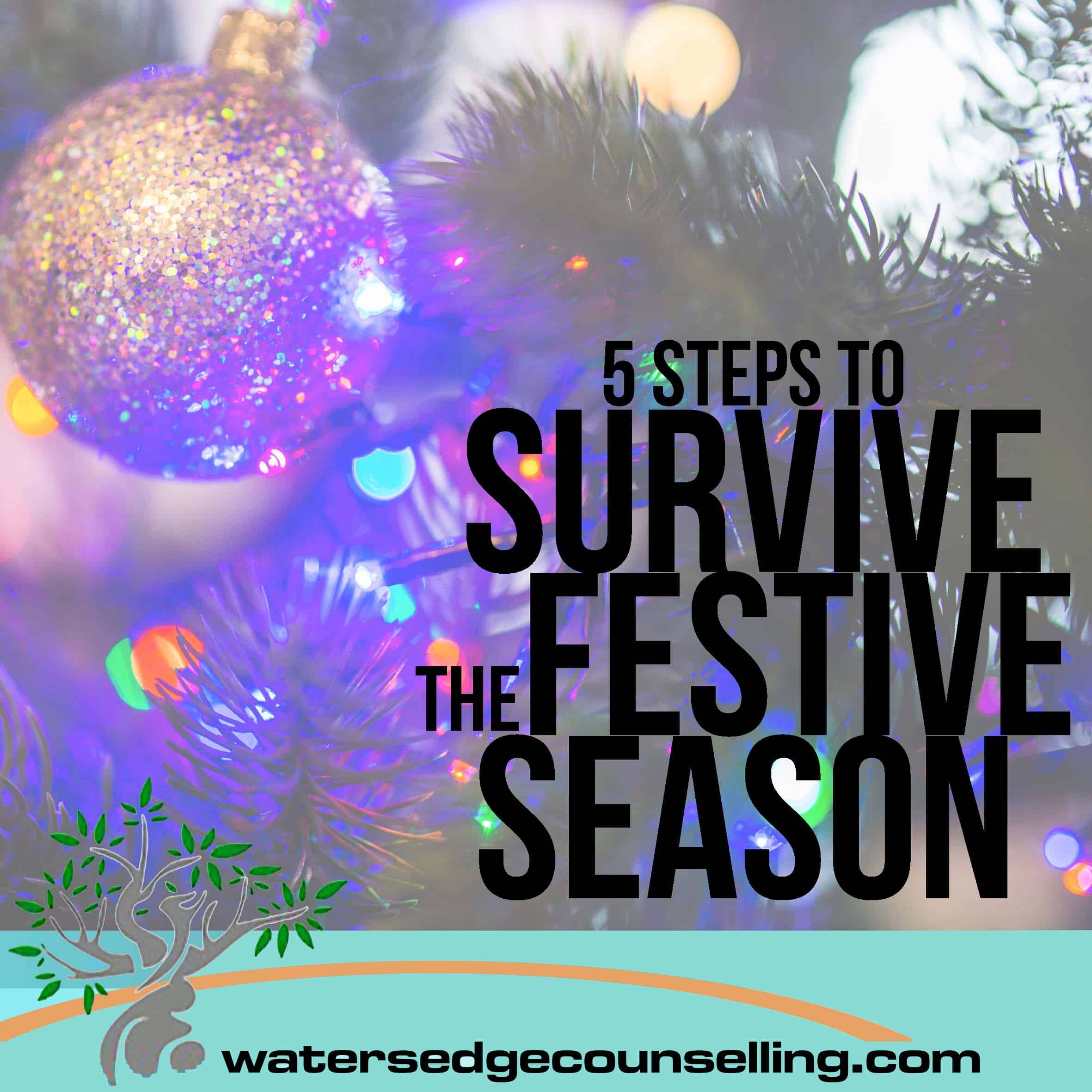 5 Steps to Survive the Festive Season