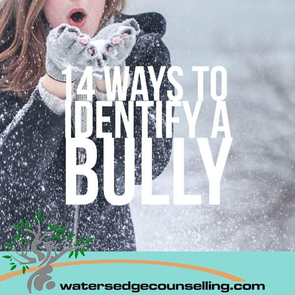 14 Ways to Identify a Bully