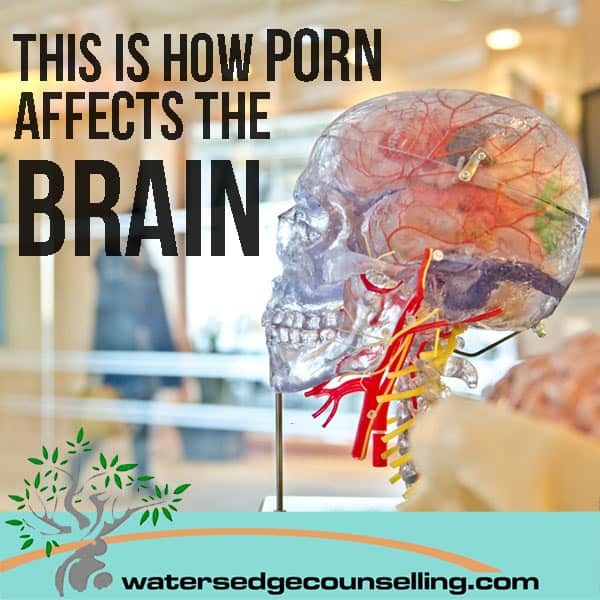 This is how porn affects the brain