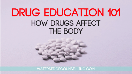 Drug Education 101: How drugs affect the body