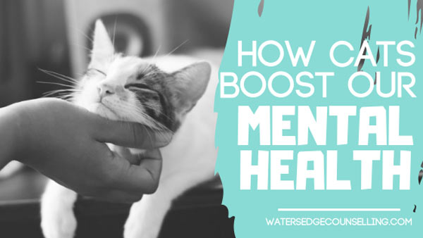 How cats boost our mental health